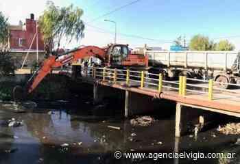 Nueva jornada de limpieza en Bernal Oeste, La Florida, la Matera y Ezpeleta - Agencia El Vigía