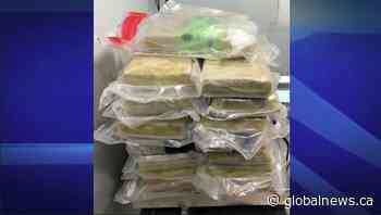 More than 80 pounds of cocaine, fentanyl seized at Sarnia's Canada-U.S. border: CBP