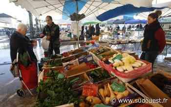 Saint-Vincent-de-Tyrosse (40) : le marché revient le 25 avril - Sud Ouest