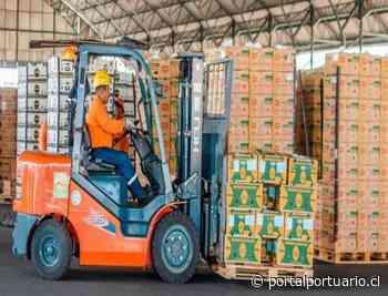 Terminal Marítima de Puerto Bolívar exporta 1,5 millones de cajas de banano pese a emergencia sanitaria - PortalPortuario