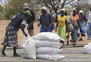 Redcliff councillors blast top civil servant for partisan food distribution - New Zimbabwe.com