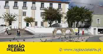 Leiria combate crescimento das comunidades de pombos - Região de Leiria