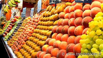 Oderzo riapre i mercati alimentari: «Vietato andarci a piedi o in bici» - TrevisoToday