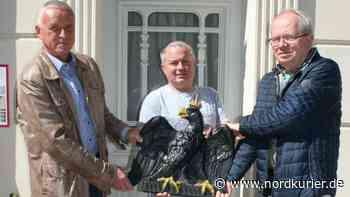 Der schwarze Adler von Altentreptow ist eingeflogen - Nordkurier