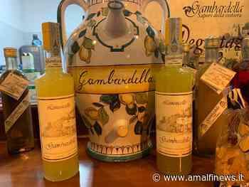 Il limoncello del liquorificio Gambardella di Minori: in un sorso il bello e il buono della Costa d'Amalfi - Amalfi News