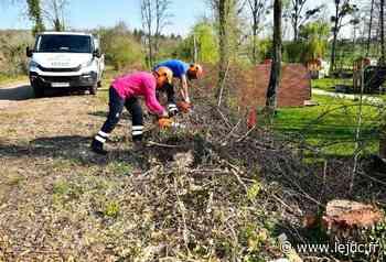 Des arbres abattus sur la véloroute entre Champvert et La Machine - Le Journal du Centre
