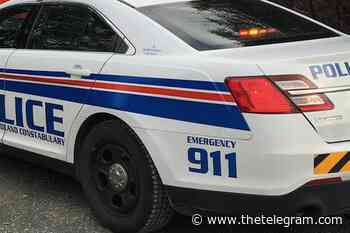 Man arrested after disturbance at Mount Pearl home - The Telegram