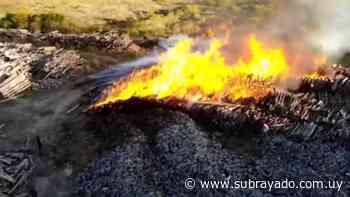Incendio afectó depósito de un aserradero en Paysandú - Subrayado.com.uy