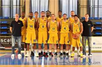 """N1: François Sence (Avignon-Le Pontet): """"plus l'arrêt est long, plus une fin de saison prématurée serait l'option la plus sage"""" - BasketEurope.com"""