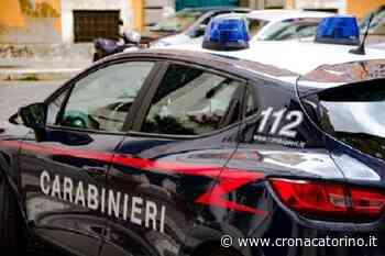 Allarme per degli spari Piossasco, era un dissuasore acustico per uccelli - Notizie Torino - Cronaca Torino - Cronaca Torino