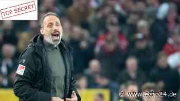 """Nach Badstuber-Vergleich: VfB-Coach wird zum """"PEP""""arazzo! - echo24.de"""