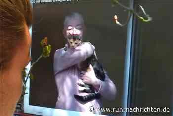 Eine Woche voller Panik: Ulrike Kropp blickt auf Chaos-Umzug zurück - Ruhr Nachrichten