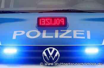 Vorfall in Vaihingen an der Enz - Unbekannte zünden Feuerwerk vor Polizeirevier - Stuttgarter Nachrichten