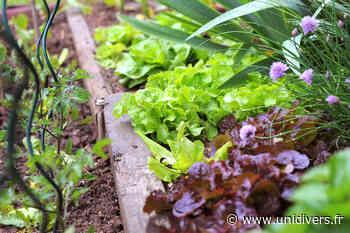 Tous au jardin ! Jardin partagé 21 mars 2020 - Unidivers