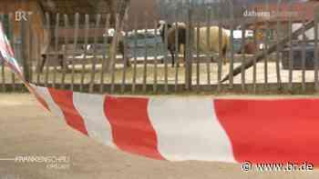 Corona trifft Erlebnisbauernhof in Langensendelbach schwer - BR24