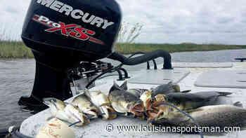 Fish slicks for big trout at Big Lake, Sabine - Louisiana Sportsman