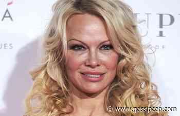 Was Pamela Anderson Pregnant With Her Third Child? - Gossip Cop