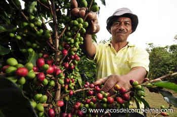 En Casabianca carnetizarón a los campesinos para poder desplazarse con sus productos - Ecos del Combeima