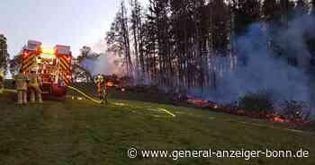 Feuer in Much: Großes Waldstück an der B56 in Brand - General-Anzeiger