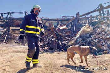 Brandursachen-Schnüffler auf Spurensuche in Heidenau - TAG24