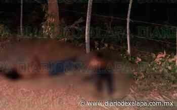 Tiran dos cuerpos en camino de terracería, en Santiago Tuxtla - Diario de Xalapa