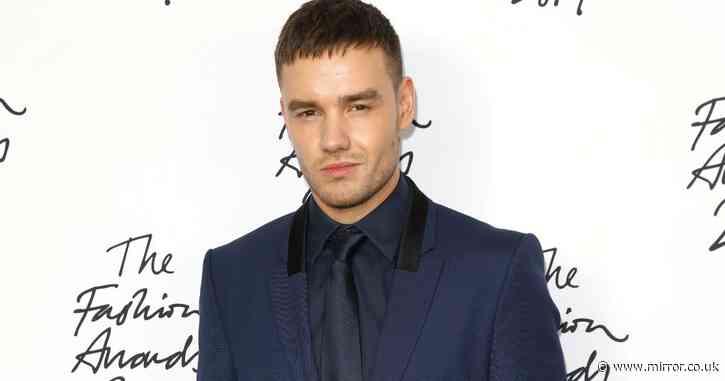 Liam Payne asks DJ Alesso to replace Zayn Malik as One Direction reunion stalls - Mirror Online