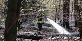 Feuerwehreinsatz - Waldbrand in Stadtallendorf - Oberhessische Presse