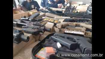 PF e PRF fazem grande apreensão de maconha e armas em Palotina (PR) - CenárioMT
