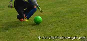 Football (R2). En direct: Ploermel FC - Enfants de Guer - Sport - Les Infos du Pays Gallo - Les Infos du Pays Gallo