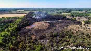 Brand in waardevol natuurgebied waarschijnlijk aangestoken: alles duidt op kwaad opzet