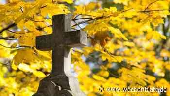 Frontal gegen einen Baum geprallt – 88-Jähriger stirbt bei Altmannstein - Wochenblatt.de