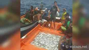Pescadores donaron sardinas a pobladores de Ocumare de la Costa - El Pitazo
