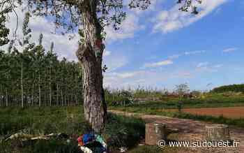Lot-et-Garonne : la réouverture de la déchetterie de Tonneins sous conditions - Sud Ouest