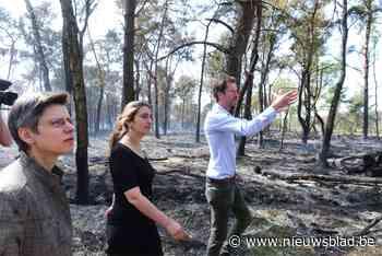 """Minister Demir bezoekt door brand getroffen natuurgebied: """"Dit is een ecologisch drama"""""""