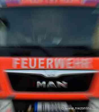 Polizei: Zwei Hunde bei Wohnhausbrand in Dinklage verendet - Nordwest-Zeitung