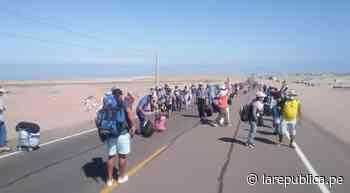 Más de 200 personas empezaron caminata en Ilo para retornar a sus regiones - LaRepública.pe