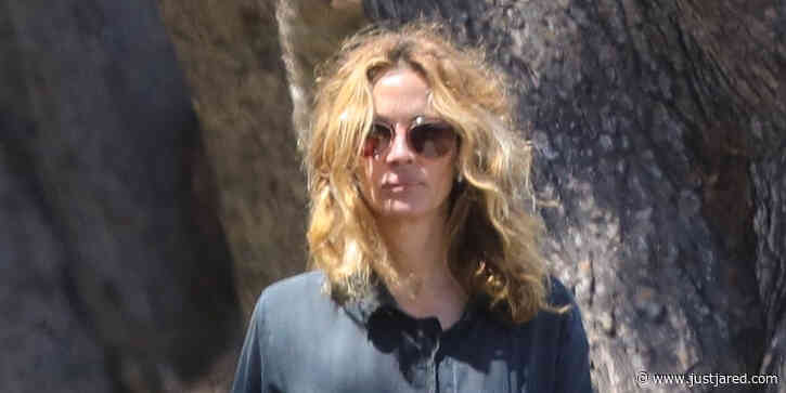 Julia Roberts Walks Her Dogs With The Best Quarantine Hair Of Us All