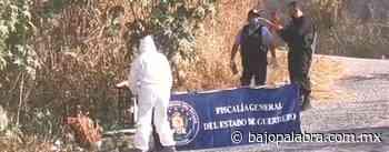 Hallan asesinado a un hombre en la vieja carretera Chilpancingo - Tixtla - Bajo Palabra Noticias