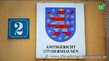 Eine Autofahrt ohne Führerschein im Kyffhäuserkreis - Thüringer Allgemeine