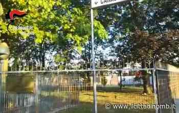 Ancora droga alla Groane: un arresto - Il Cittadino di Monza e Brianza