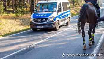 Pferd muss nach Unfall eingeschläfert werden - Lkw-Fahrer flüchtet - Nordbayern.de