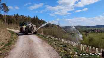 Dürre in Gaildorf: Im Forst hofft man auf einen verregneten Mai - SWP