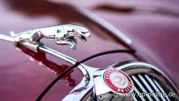 Polizei sucht rücksichtslosen Jaguar-Fahrer: Er ließ Verletzten nach Unfall einfach zurück - op-online.de