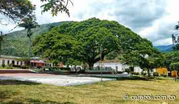 Bochalema asume el pago de algunos servicios públicos en este municipio - Caracol Radio