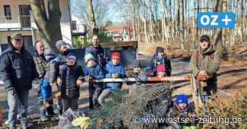 Müllsammler entdecken in Zinnowitz illegal entsorgten Bauschutt - Ostsee Zeitung