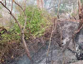 Hombre fallece en incendio en San Pedro Masahuat - diario1.com