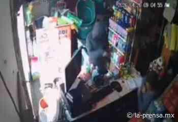 Mujer le roba el bolso a encargada de una tienda en Ixtapaluca - La-Prensa.MX