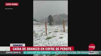 Se registra granizada en el Cofre de Perote, Veracruz - Noticieros Televisa
