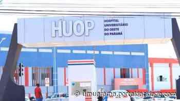 Saúde Menino de 8 anos morador de Assis Chateaubriand morre com dengue hemorrágica 22/04/2020 - ® Portal da Cidade   Umuarama