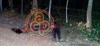 Los 2 ejecutados en Santiago Tuxtla eran del municipio de Isla - alcalorpolitico